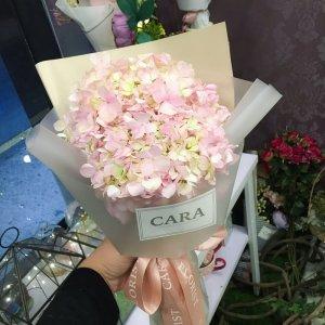 MOP220  單枝繡球花鮮花束