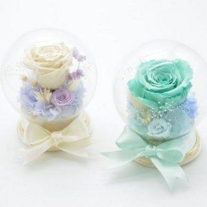 MOP580  保鮮花玻璃球